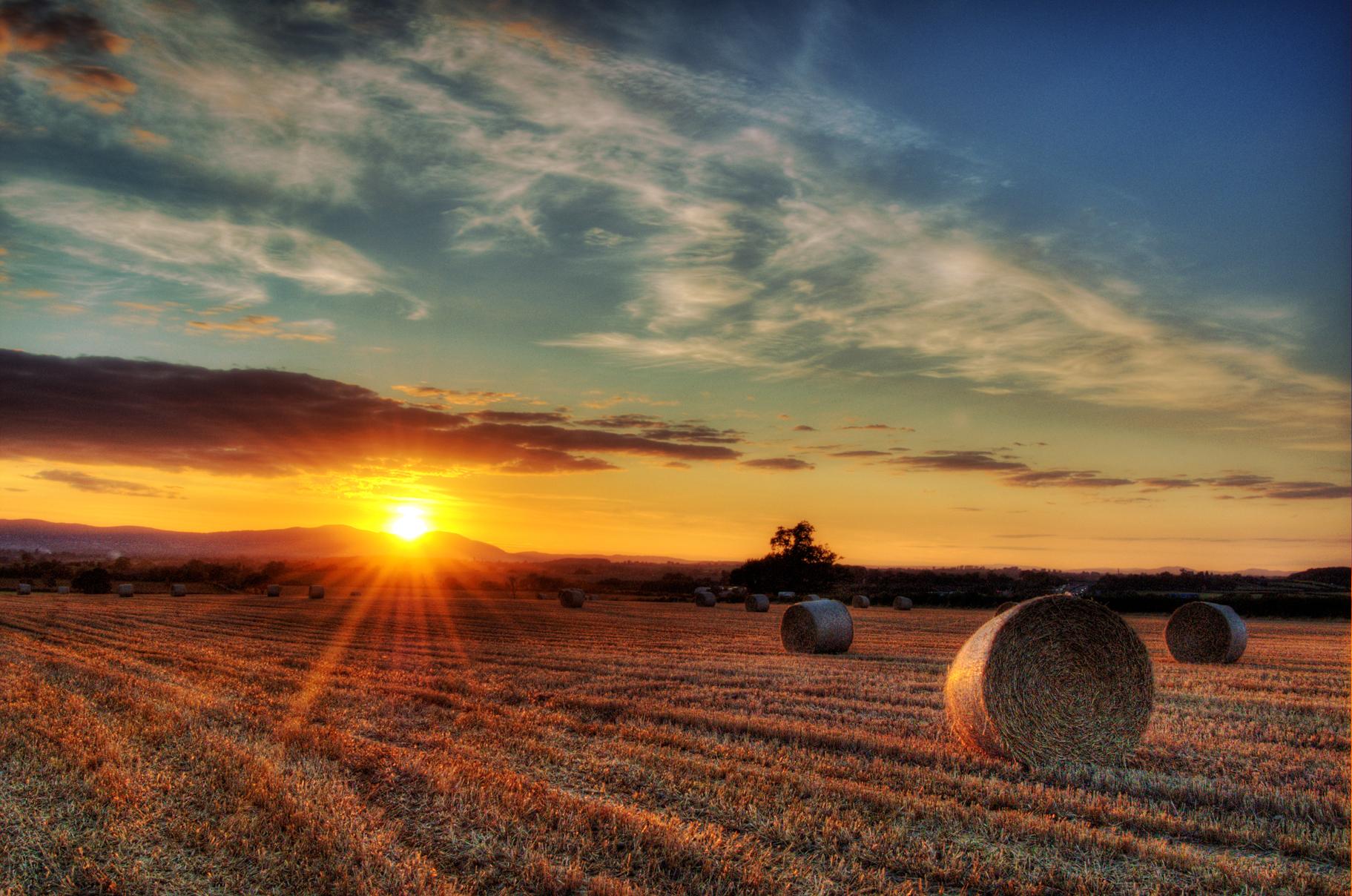 Sonnenuntergang im Heu